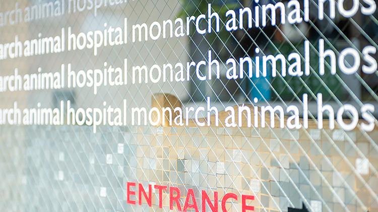 「目黒モナーク動物病院」外観3